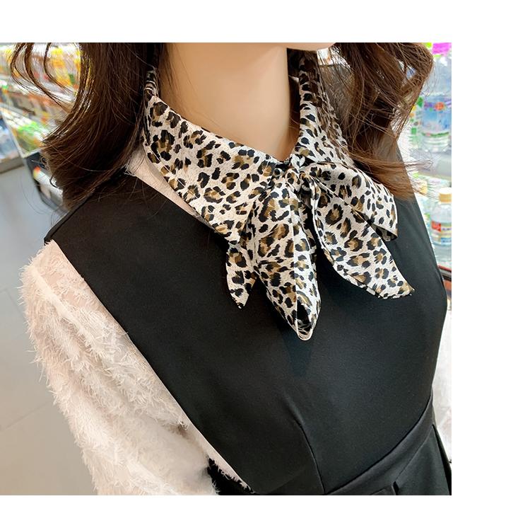 韩版气质豹纹领5